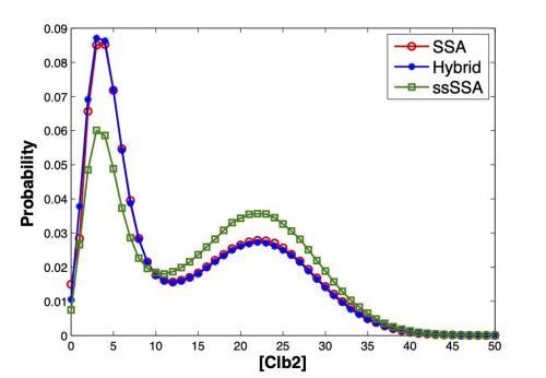 Hybrid Stochastic Algorithm